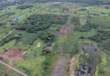 Descubre centro en ceremonial en ruta del Tren Maya