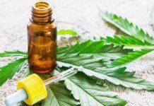 Presentan reglamento para uso medicinal del cánnabis